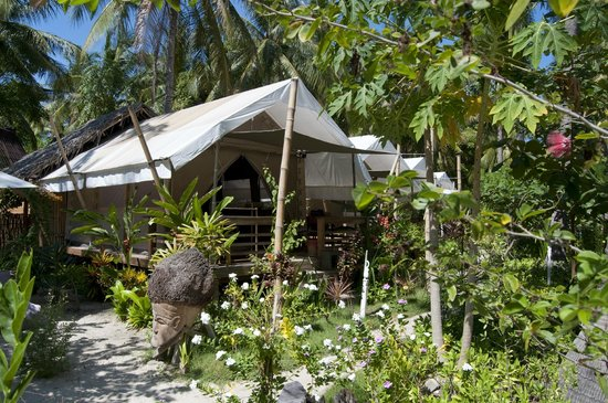 La Cocoteraie Ecolodge: Tents in the garden