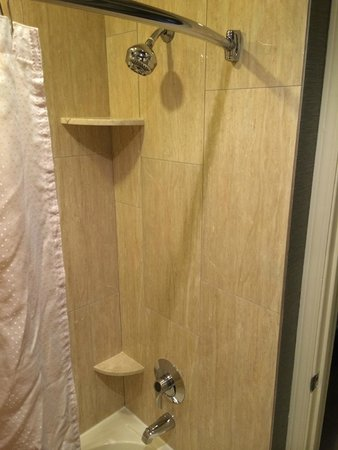 Homewood Suites by Hilton Chicago Schaumburg: Bathroom