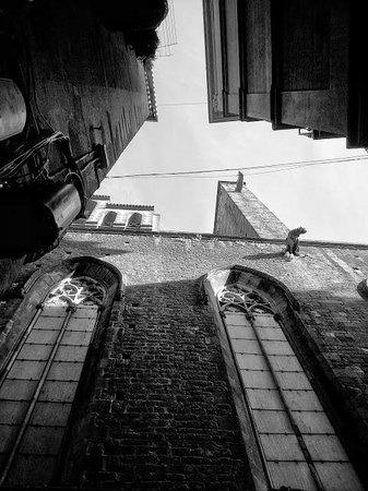 Barrio Gótico: Sta.Maria del Mar bajo sus gárgolas