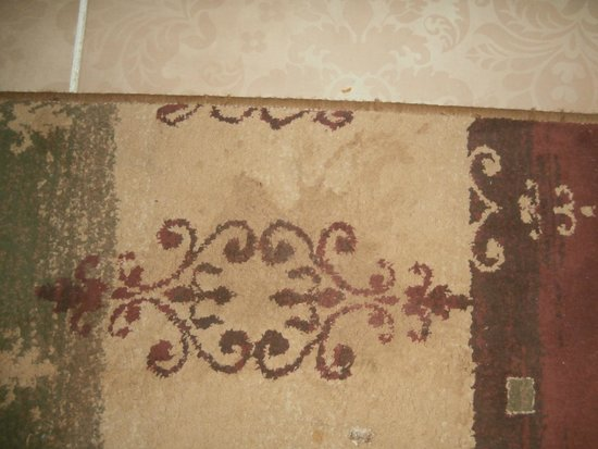Albatros Palace Resort: Smelly stains in the carpet