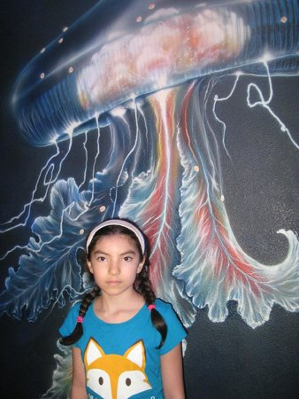 Texas State Aquarium: Liked the picture on the wall.