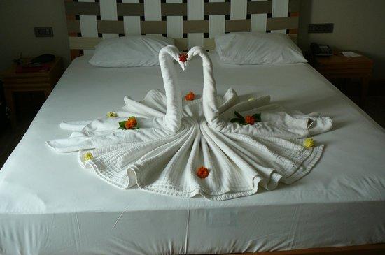 Jiva Beach Resort: Creative cleaners