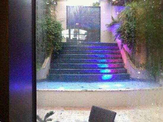 The Ritz-Carlton Coconut Grove, Miami: Waterfall view thru hotel lobby