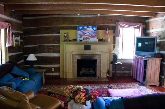 Lydia Mountain Cabins: living room