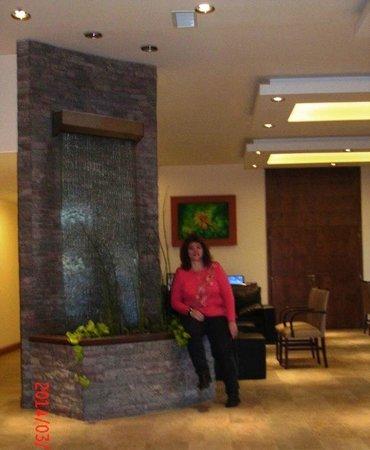 Villa Huinid Hotel Pioneros: LOBY