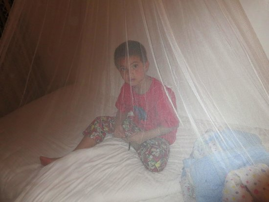 Keekorok Lodge-Sun Africa Hotels: loved the mosquito netting