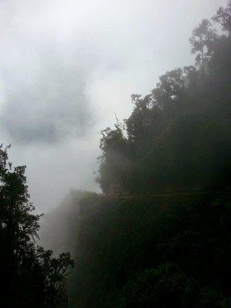 Yungas Road: Descending through the rainforest