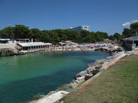 Cala Blanca Sun Hotel: beach