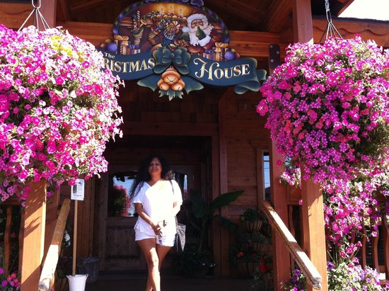 The Pancake House and Christmas Shop: Luisa Norris