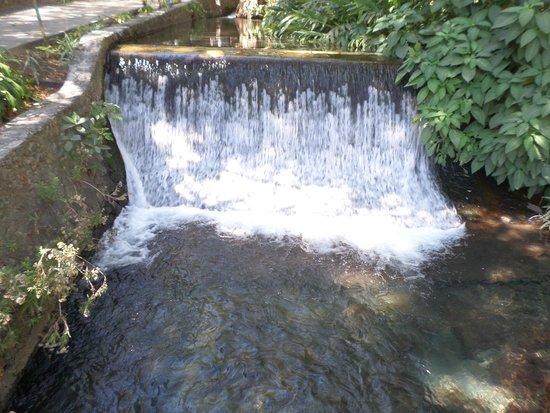 Parque Ecologico Chapultepec