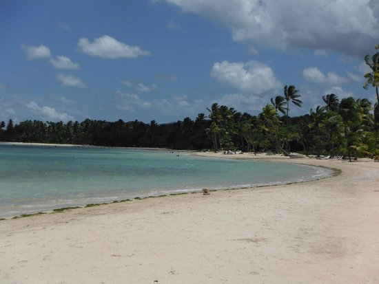 Grand Bahia Principe El Portillo : Paseo matutino