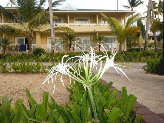 Grand Bahia Principe El Portillo: Nuestra habitacion