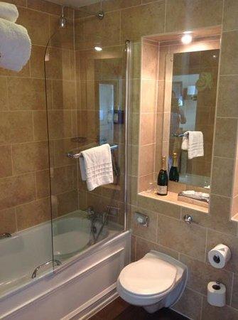 Avon Gorge Hotel: En suite