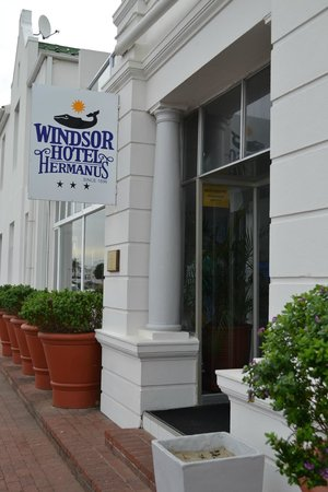 Windsor Hotel & Apartments : Hotel entrance