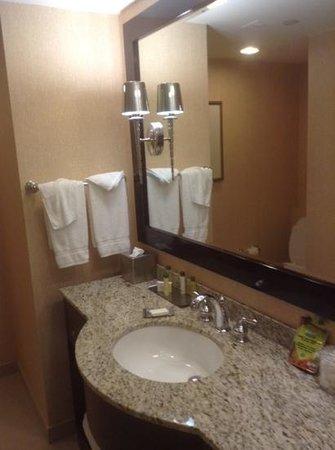 DoubleTree Hotel Boston/Bedford Glen: bathroom