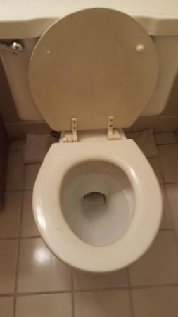 Erin Motel: bathroom
