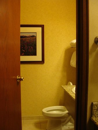 Olympic Lodge : Toilet in the same space as the shower, with a door separating it from the washbasins.