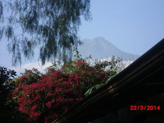 Quinta de las Flores: Vista del volcan desde el hotel