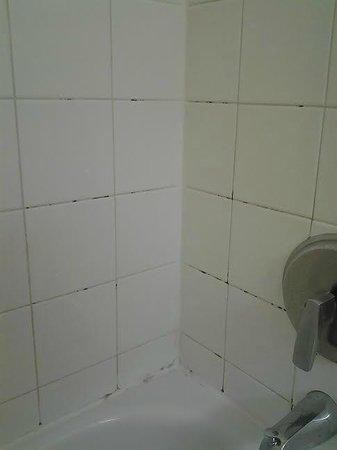 Extended Stay America - Fort Lauderdale - Davie : Bathroom mold/mildrew