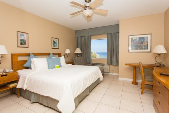 Cara Suites - Pointe a Pierre: Hotel Room with a view of the ocean