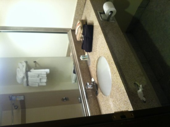 Quality Suites Milwaukee Airport: Bathroom