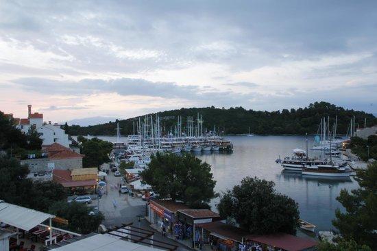 Holiday House Slavica Strazicic : View from the balcony