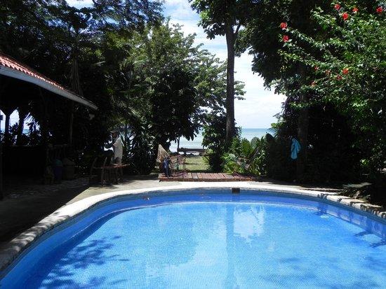 The Howler Monkey Hotel : piscine face à l'océan
