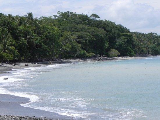 The Howler Monkey Hotel : plage à Cabuya