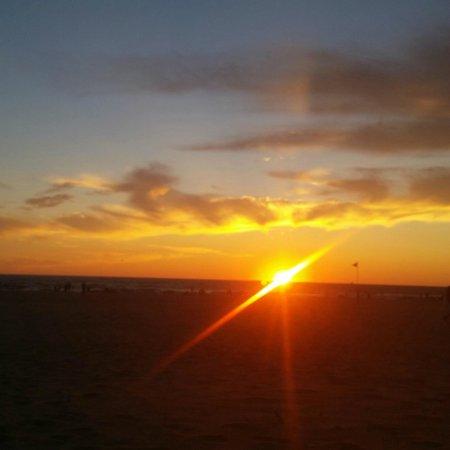 Fairfield Inn & Suites Holland: Beach at Holland State Park