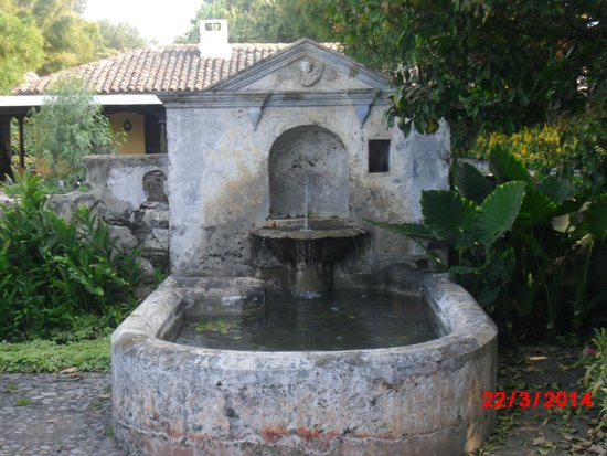 Quinta de las Flores: Fuente en el area de los jardines