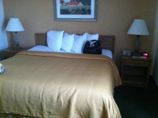 Quality Suites Milwaukee Airport: King size bed