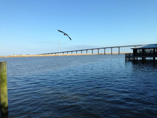 Dixie Theatre: Bridge over Apalachicola River