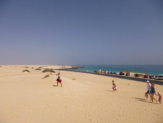 Corralejo Dunes: dune
