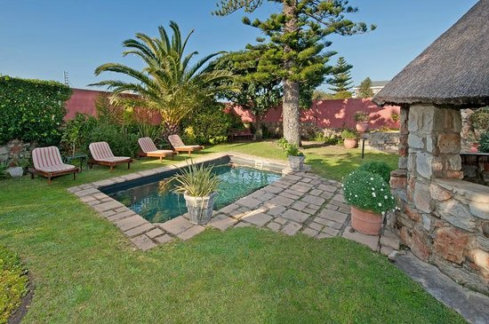 House on Westcliff: Garden and pool
