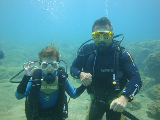 Paradise Dive Center: Swimming with the fishes