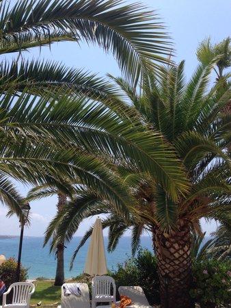 Ascos Coral Beach Hotel: X