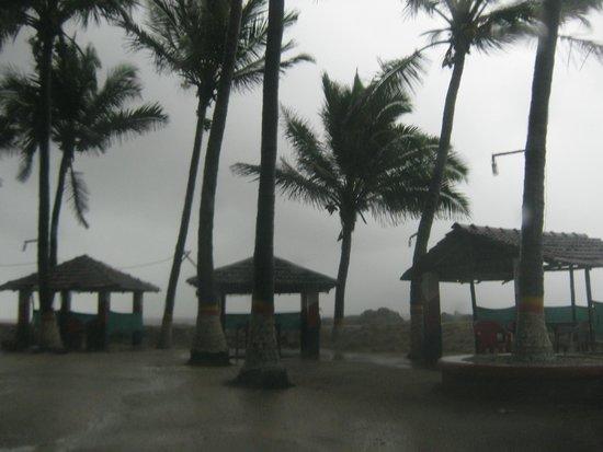 Picxy Sea Resort: viewv