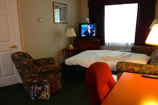 Smart Suites Burlington: Living Room w Open Sofa Bed