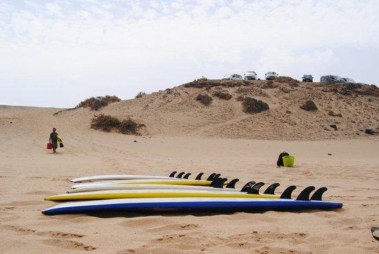 Escuela de surf Free Spirit Fuerteventura