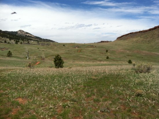 Horsetooth Mountain Open Space: Can't beat these views!