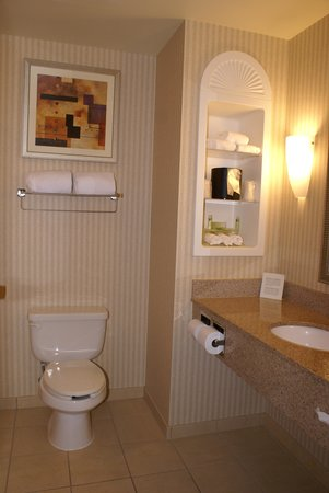 Holiday Inn Express Hotel & Suites Latham : 'clean' bathroom