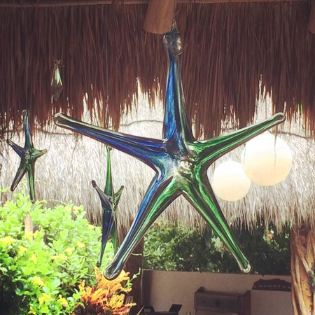 Encantada Tulum: I can't get enough of these stars!