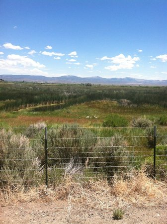 1862 David Walley's Hot Springs Resort and Spa: View of valley from walking trail