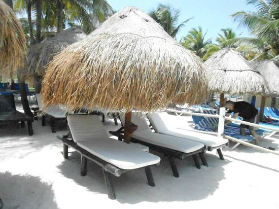 Viva Wyndham Azteca : beach chairs in the VIP section