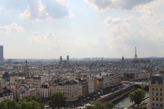 Catedral de Notre Dame: View from the top.
