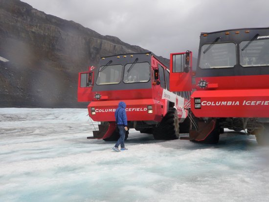 Columbia Ice Field : Ice Explorers