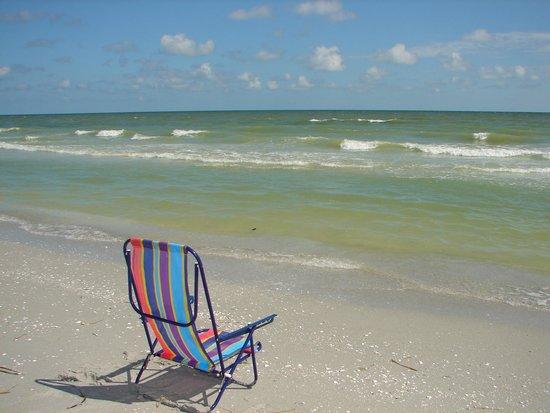 West Wind Inn: Sun, Sand, Shells & Sea