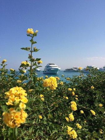 Hurghada Marriott Beach Resort: Вид с острова на открытое море