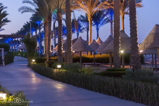 Sharm Grand Plaza : Outdoor
