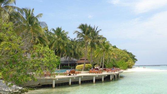 Royal Island Resort & Spa : piscine